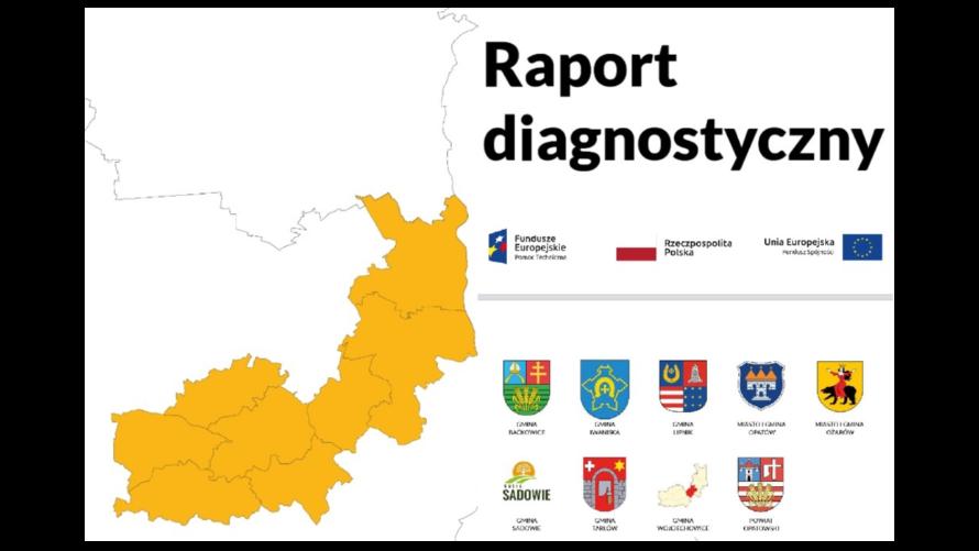 Raport diagnostyczny - Ziemia Opatowska